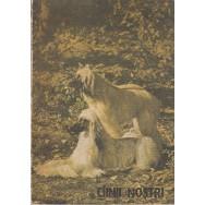 Ciinii nostri, buletin documentar, nr. 2 - Colectiv