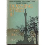 Downing street 10 - Camil Muresan, Alexandru Vianu, Robert Paiusan