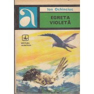 Egreta violeta - Ion Ochinciuc