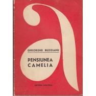 Pensiunea Camelia - Gheorghe Buzoianu