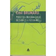 Povestea boiernasului de tara si a fecioarei … - Emil Brumaru