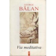 Via meditativa - George Balan